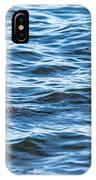 Merganser Pair IPhone Case