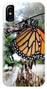 Metamorphosis Of The Monarch IPhone Case