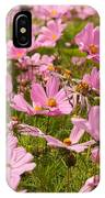 Mexican Aster Flowers 1 IPhone Case