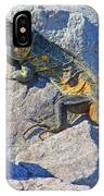 Mexican Iguana IPhone Case