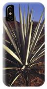 Mexico, Oaxaca, Field Of Agave Plants IPhone Case