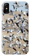 Migrating Snow Geese IPhone Case