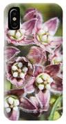 Milk Weed Vine Flowers IPhone Case