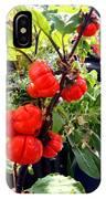 Mini Pumpkin Tree  IPhone Case