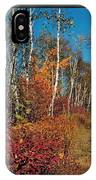 Minnesota  Autumn Path IPhone Case