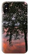 Minnesota Sunset IPhone Case