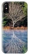 Mirror Mirror On The Pond IPhone Case