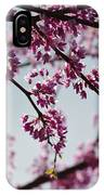 Misty Spring Morning IPhone Case