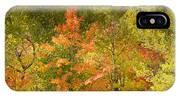 Mixed Autumn IPhone Case