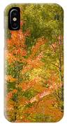 Mixed Autumn IPhone Case