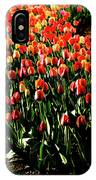 Mixed Tulips IPhone Case