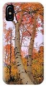Moments Of Fall IPhone X Case