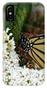 Monarch And The Butterfly Bush  IPhone Case