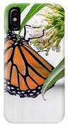 Monarch Butterfly In The Garden 3 IPhone Case
