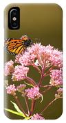 Monarch Butterfly 5 IPhone Case