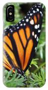 Monarch Butterfly In Lush Leaves IPhone Case