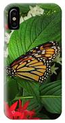 Monarch Framed IPhone Case