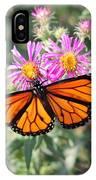 Monarch On Blanket Flower IPhone Case