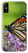 Monarch On Butterfly Bush IPhone Case