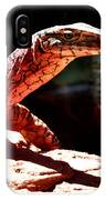 Monitor Lizard IPhone Case