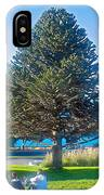 Monkey Puzzle Tree In Central Park In Bariloche-argentina  IPhone Case