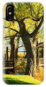 Mono Lake Garden Bridge IPhone Case