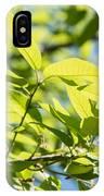Monterrey Oak Leaves In Spring IPhone Case
