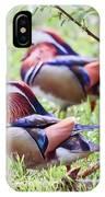 More Mandarin Ducks IPhone Case