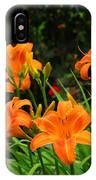 More Orange Daylilies IPhone Case