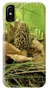 Morel Mushroom IPhone Case