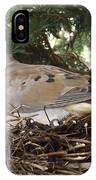 Morning Dove On Her Nest 2 IPhone Case