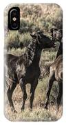Morning Dust Up IPhone Case