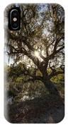 Morning Sun Through The Oak IPhone Case