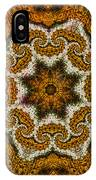 Mosaic Antigua IPhone Case