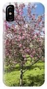 Moscow, Pink Cherries In Kolomenskoye Park IPhone Case