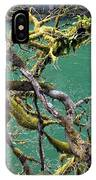 Moss And Trees IPhone Case