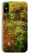 Moss Covered Log IPhone Case