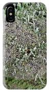 Moss Trees IPhone Case