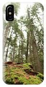 Moss Under The Cedars IPhone Case