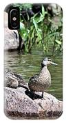 Mother Duck With Juveniles IPhone X Case