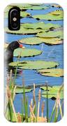 Mother Moorhen IPhone Case