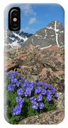 Mount Holy Cross With Wildflowers 2 IPhone Case
