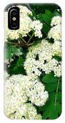 Mountain Ash Blossoms IPhone Case