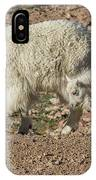 Mountain Goat Kid Stretches By Mom IPhone Case