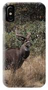 Mountain Nyala IPhone Case