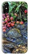 Mountain Stream In Oak Glen IPhone Case