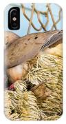 Mourning Dove And Chick IPhone Case