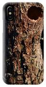 Red Bellied Woodpeckers IPhone Case