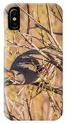 Mr. Camouflage IPhone Case