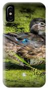 Ms. Wood Duck IPhone Case